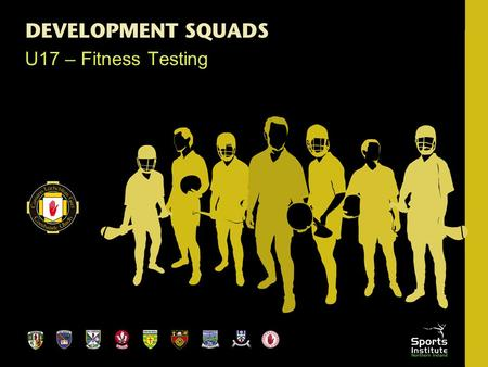 U17 – Fitness Testing. Reasons for Assessments A Functional screen can be used to assess competence in general dynamic movements. A Fitness assessment.