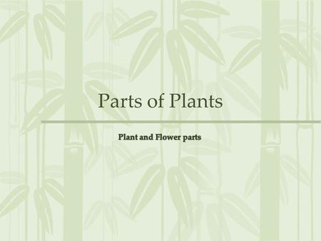 Parts of Plants. Parts of a Plant Flower Leaves Stem Roots Stem: Stems hold plants upright so they can obtain sunlight. Stems also carry food and water.