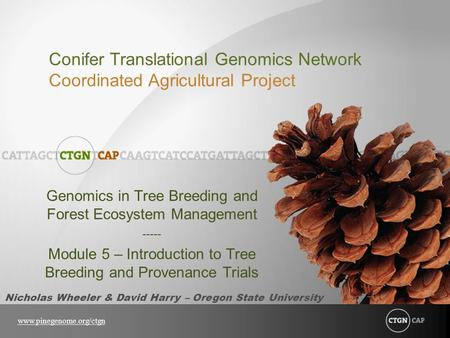 Conifer Translational Genomics Network Coordinated Agricultural Project www.pinegenome.org/ctgn Genomics in Tree Breeding and Forest Ecosystem Management.