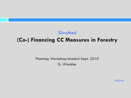 SilvaMed (Co-) Financing CC Measures in Forestry Planning Workshop Istanbul Sept. 2010 G. Winckler EcoStrat.