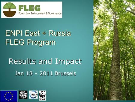 ENPI East + Russia FLEG Program 1 Results and Impact Jan 18 – 2011 Brussels.