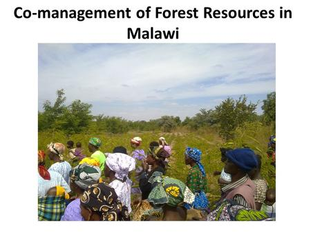Co-management of Forest Resources in Malawi. High incidence of poverty and food insecurity: – Increasing demand for land and forest resources – High dependence.