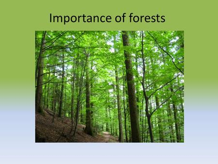 Importance of forests. Why are forests important? They create oxygen Natural habitat of various types of animals It effects the water cycle Important.