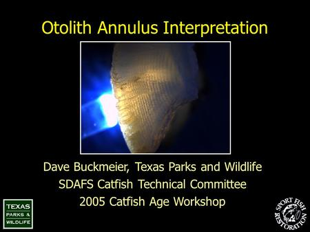 Otolith Annulus Interpretation Dave Buckmeier, Texas Parks and Wildlife SDAFS Catfish Technical Committee 2005 Catfish Age Workshop.
