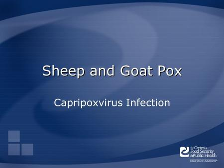 Capripoxvirus Infection