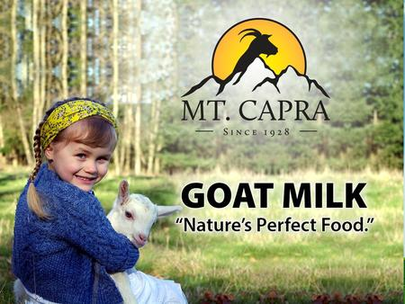 Goat milk is: #1 Goat Milk is the most popular dairy beverage in the world 65% of world pop. drinks goat's milk There are several reasons for this popularity.