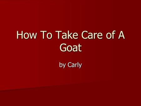 How To Take Care of A Goat by Carly. Taking Care of my Goat I like to take care of my goat. He is cute and he likes to jump on me. I like to take care.