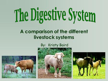 A comparison of the different livestock systems
