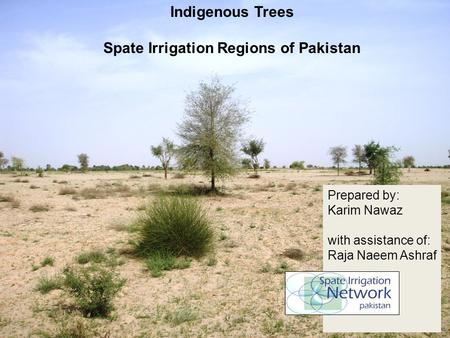 Indigenous Trees Spate Irrigation Regions of Pakistan Prepared by: Karim Nawaz with assistance of: Raja Naeem Ashraf.