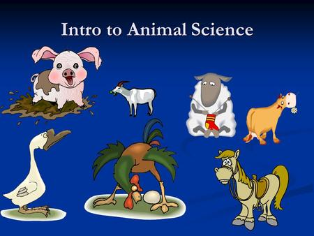 Intro to Animal Science. Assignment In groups, brainstorm to come up with at least 20 uses for or products produced from animals. You cannot use FOOD!