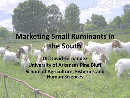 Marketing Small Ruminants in the South Dr. David Fernandez University of Arkansas Pine Bluff School of Agriculture, Fisheries and Human Sciences.