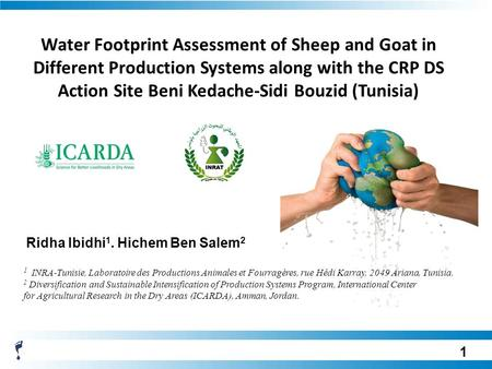 Water Footprint Assessment of Sheep and Goat in Different Production Systems along with the CRP DS Action Site Beni Kedache-Sidi Bouzid (Tunisia) Ridha.