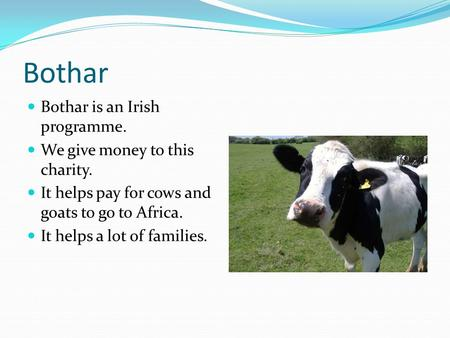 Bothar Bothar is an Irish programme. We give money to this charity. It helps pay for cows and goats to go to Africa. It helps a lot of families.