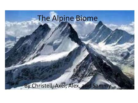 The Alpine Biome By Christell, Axel, Alex, and Sammy.