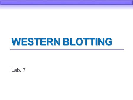 Western Blotting Lab. 7.