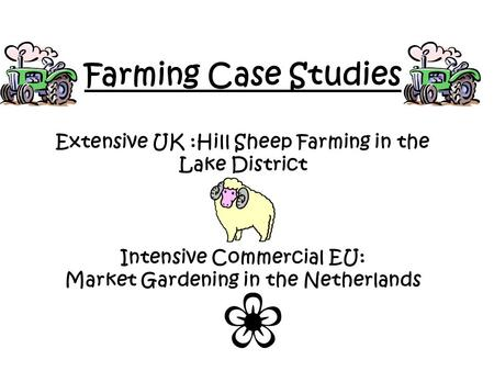 Farming Case Studies Extensive UK :Hill Sheep Farming in the Lake District Intensive Commercial EU: Market Gardening in the Netherlands.