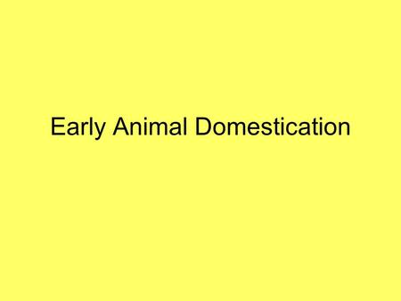 Early Animal Domestication. Locations for Initial Domestication Animals have been domesticated on every continent that has developed a food producing.