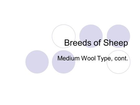Breeds of Sheep Medium Wool Type, cont.. A quick review As you will recall, yesterday we took a look at 6 breeds of Medium Wool Sheep, what were they?