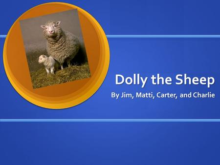 Dolly the Sheep By Jim, Matti, Carter, and Charlie.