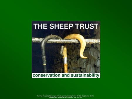 The Sheep Trust, a charitable company limited by guarantee. Company Number 4284999, Charity Number 1094514. Registered office University of York, PO Box.