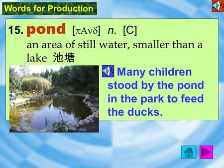 Words for Production 15. pond [ pAnd ] n. [C] an area of still water, smaller than a lake 池塘 Many children stood by the pond in the park to feed the ducks.