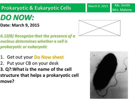 Prokaryotic & Eukaryotic Cells March 9, 2015 DO NOW: Date: March 9, 2015 6.12(B) Recognize that the presence of a nucleus determines whether a cell is.