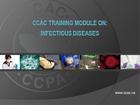 Www.ccac.ca.  This training module is relevant to all animal users working with animals housed in vivaria which are enclosed areas such as laboratories.