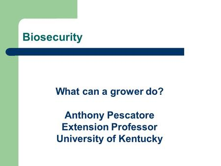 What can a grower do? Anthony Pescatore Extension Professor University of Kentucky Biosecurity.