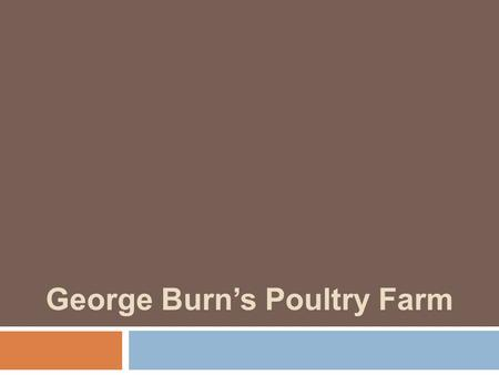 George Burn's Poultry Farm. Class Announcements  Service Learning Assignment:  Schedule a meeting with Danika Leblanc ( prior to contacting.
