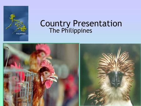 Country Presentation The Philippines. 1. Latest HPAI Situation Update Philippines is still an AI-free country Threat Assessment: a.Illegal trade of live.