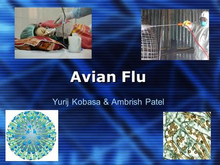 Avian Flu Yurij Kobasa & Ambrish Patel. Overview 1. Background Information 2. Brief overview of genome structure 3. Origin/History 4. Geographical Distribution.