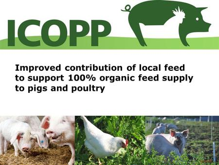 Improved contribution of local feed to support 100% organic feed supply to pigs and poultry 1.