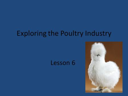 Exploring the Poultry Industry Lesson 6. Next Generation Science/Common Core Standards Addressed! HS‐LS2‐1. Use mathematical and/or computational representations.
