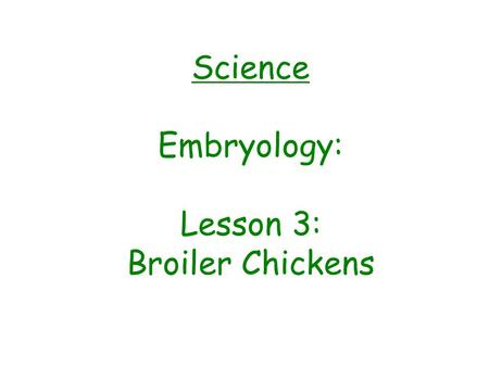 Science Embryology: Lesson 3: Broiler Chickens The BIG Question: What are the two types of chickens and the differences between them?