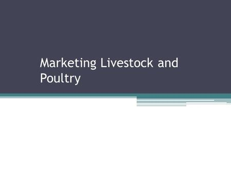 Marketing Livestock and Poultry. Objectives Describe the methods used to market livestock and poultry Compare methods of marketing livestock. Critique.