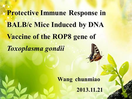 Protective Immune Response in BALB/c Mice Induced by DNA Vaccine of the ROP8 gene of Toxoplasma gondii Wang chunmiao 2013.11.21.