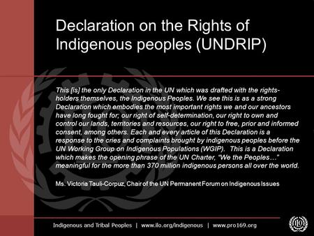 Indigenous and Tribal Peoples | www.ilo.org/indigenous | www.pro169.org This [is] the only Declaration in the UN which was drafted with the rights- holders.