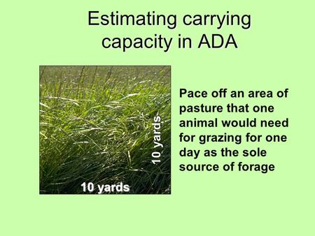 Estimating carrying capacity in ADA 10 yards Pace off an area of pasture that one animal would need for grazing for one day as the sole source of forage.