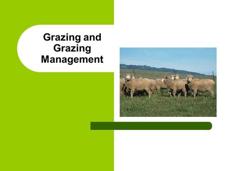 Grazing and Grazing Management. Positive Impacts Proper management – Reduced erosion – Improved water quality – Food for wildlife – Habitat and cover.