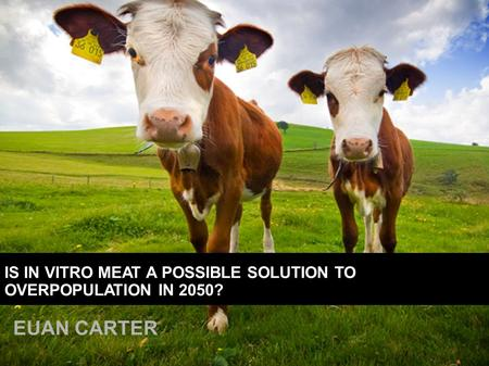 EUAN CARTER IS IN VITRO MEAT A POSSIBLE SOLUTION TO OVERPOPULATION IN 2050?