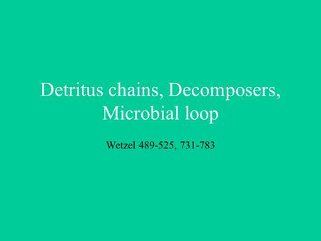Detritus chains, Decomposers, Microbial loop