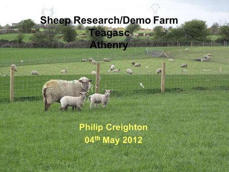 Sheep Research/Demo Farm Teagasc Athenry Philip Creighton 04 th May 2012.
