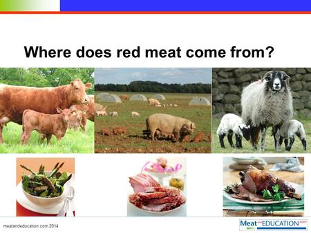 Where does red meat come from? meatandeducation.com 2014.