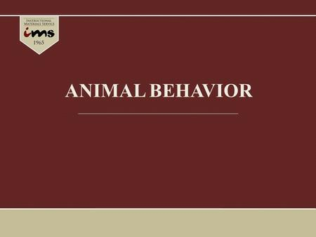 ANIMAL BEHAVIOR. Introduction The behavior represents the interface between an animal and its environment. Behavioral responses are usually the most flexible.