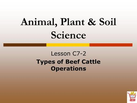 Animal, Plant & Soil Science Lesson C7-2 Types of Beef Cattle Operations.