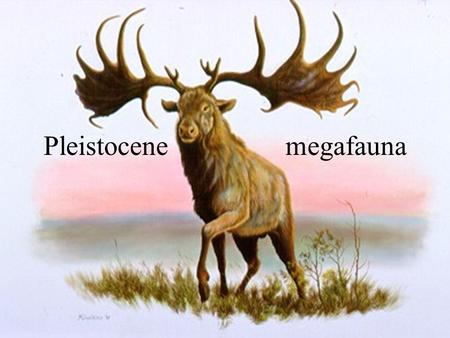 Pleistocene megafauna. Reference sites University of Texas at Austin:  Denver Museum of.