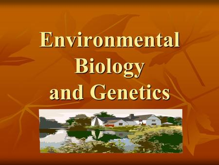 Environmental Biology and Genetics. Energy Flow Ecology – The study of living organisms in relation to their environment Ecology – The study of living.