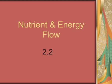 Nutrient & Energy Flow 2.2. I. Producers vs. Consumers A. Producers / Autotrophs- Organisms that can make their own food/sugars. 1. Plants are autotrophs.