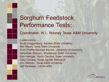 Sorghum Feedstock Performance Tests: Coordinator: W.L. Rooney Texas A&M University Collaborators: Scott Staggenborg, Kansas State University Ken Moore,