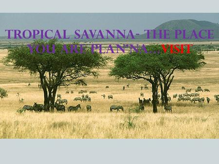 Tropical Savanna- the place you are plan'na…visit.